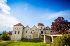 Old castle surrounded with summer nature Stock Images