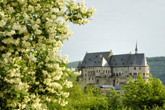 The old castle of Vianden. In Luxembourg,Europe Royalty Free Stock Photos
