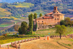 Old castle and vineyards in Piedmont, Italy. Stock Photography