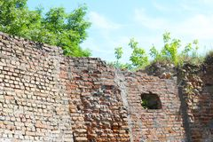Old castle wall plants and sky. The hole in the ancient terrible building royalty free stock photos
