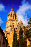 Old Cathedral in Salamanca Stock Images
