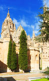 Old Cathedral of Salamanca Stock Photo