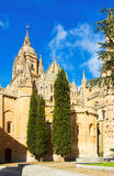 Old Cathedral of Salamanca Royalty Free Stock Photography