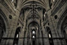 Old Cathedral of Salamanca Stock Photos