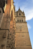 Old Cathedral of Salamanca (Spain) Stock Photography
