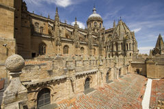 Old Cathedral of Salamanca, Spain Stock Image
