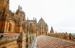 Old Cathedral of Salamanca, Stock Photography