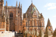 Old Cathedral of Salamanca, Spain Royalty Free Stock Photo