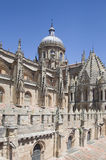 Old Cathedral of Salamanca, Spain Royalty Free Stock Photos