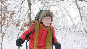 Old caucasian man makes his way with Hiking Sticks through thickets in a dense snowy forest. Thick dense thicket of. Trees and roots in in the snow-covered stock footage