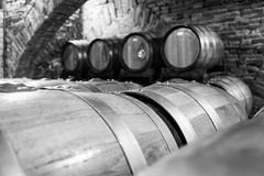 Old Cellar. Italy, Tuscany, old canteen in Val d'Orcia area dedicated to wine production stock images