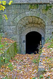 Old cellar. Entry in autumn Royalty Free Stock Photography