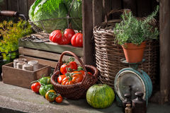 Old cellar with harvested vegetables and fruits. Closeup of old cellar with harvested vegetables and fruits Royalty Free Stock Image