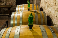 Old Cellar. Italy, Tuscany, old canteen in Val d'Orcia area dedicated to wine production stock image