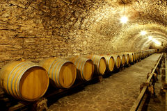 Old cellar of the winery Barrels of wine in the future Huge ware. House wine Royalty Free Stock Images
