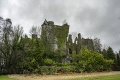 Old celtic castle in a bush
