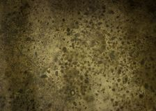 Old cement background in shades of green. Dark concrete texture material royalty free stock photography