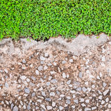 Old cement foor with grass. Background stock photos