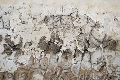 Old cement textured wall. White shade Stock Photo