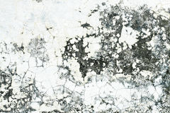 Old Cement Wall Texture Stock Image