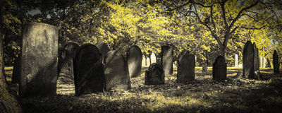 Old Cemeteries - Panoramic View Stock Image