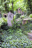An old cemetery Stock Image