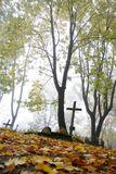 Old cemetery. An old mystic cemetery in autumn Royalty Free Stock Images