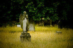 Old cemetery angel Royalty Free Stock Photos