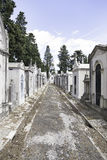 Old cemetery in the city of Lisbon Royalty Free Stock Image