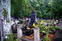 The old cemetery Royalty Free Stock Photo