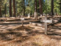 Old cemetery in the forest Royalty Free Stock Image
