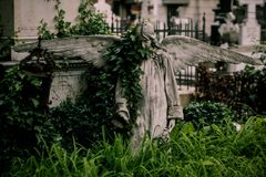 Old cemetery. Graves, statues and crypts in an old cemetery Stock Photography