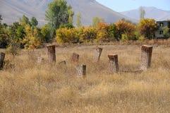 Old cemetery at lake Van, Anatolia, eastern Turkey. Old tombstones of a cemetery at lake Van in eastern turkey royalty free stock photo