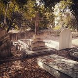 Old cemetery. Malaga, Spain, english cemetery and jewish part Royalty Free Stock Photo