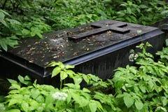 Old cemetery. Stock Photos
