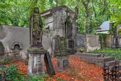 Old cemetery in Prague. Stock Image