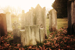 Old Cemetery. Some graves on old cemetery Royalty Free Stock Images