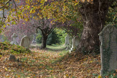 The old cemetery Southampton royalty free stock photography