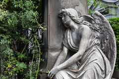 Old Cemetery statue Stock Image