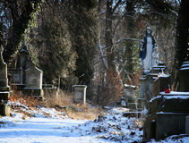 Old cemetery with statues and  tombstones. Old cemetery with statues and marble tombstones Royalty Free Stock Photography