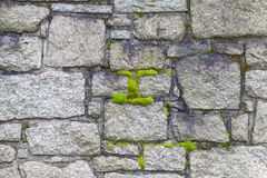 Old cemetery wall and moss Stock Image