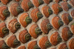 Old ceramic background Stock Photography