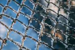 Old chained wire mesh door covered with frosting stock image