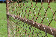 Old Chainlink Gate Royalty Free Stock Image