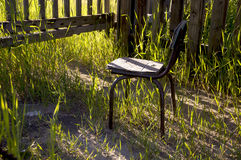 Old chair outdoor with green grass Royalty Free Stock Image