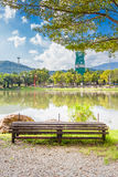 Old Chair and Pond in the garden in Chiang mai Stock Photography
