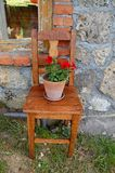 Old chair with red flower Stock Photo