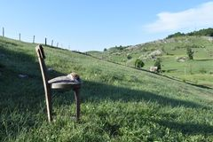 The old chair standing on the meadow Royalty Free Stock Photos