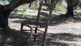 Old chair under the tree stock footage
