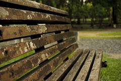 Old chairs in public park. Vintage tone, soft focus Royalty Free Stock Photo